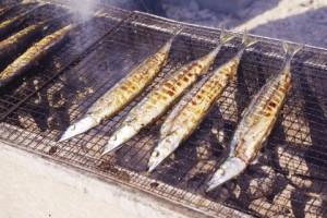 秋刀魚_2