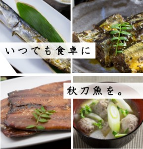 秋刀魚づくしセット