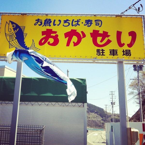 おかせいさんのカツオのぼり2012